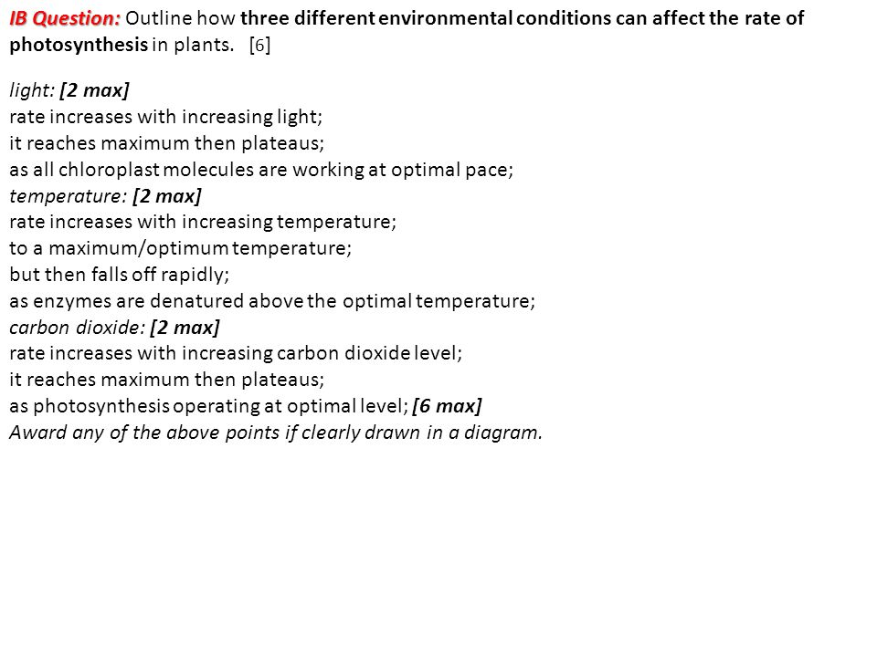 IB Question: Outline how three different environmental conditions can affect the rate of photosynthesis in plants. [6]